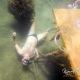 potápění na nádech kurzy