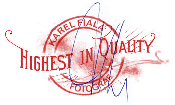 Highest in quality Karel Fiala
