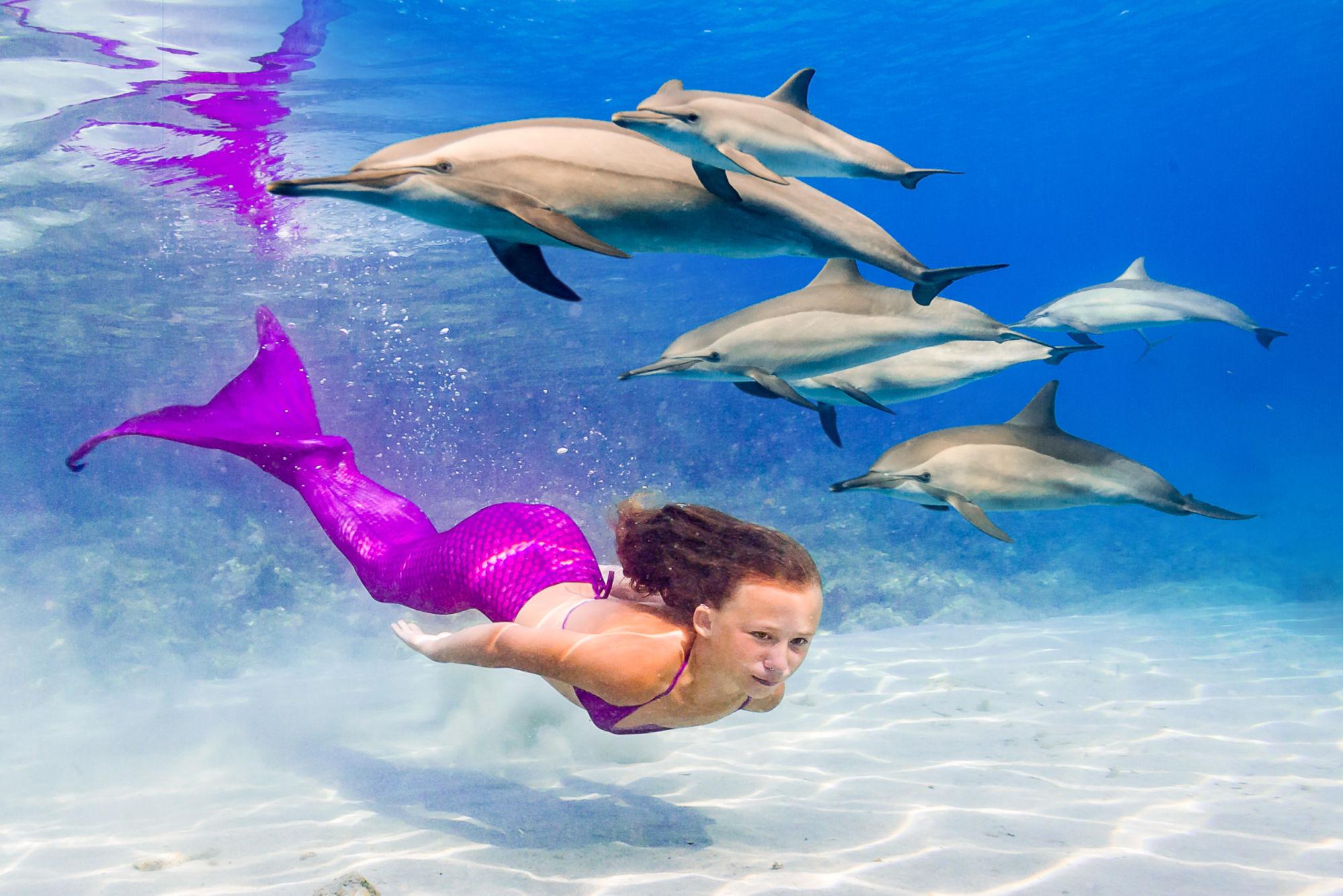 Zážitkové plavání s delfíny a mořskými pannami